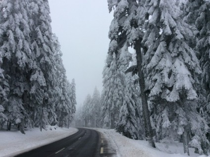 Ciel neigeux